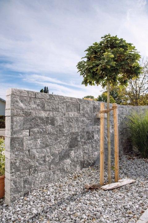 Gepflasterte Steinmauer in grau schwarz im Schichtenmauerwerk mit grauen Kieselsteine vor Mauer und eingepflanztem Baum mit Baumstuetzen mit Himmel und Pflanzen und Keiselsteinen