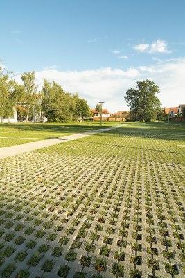 Graue Rasengitterplatten mit geraeumigen grossen Rasenkammern mit Gras bepflantzt als Parkplatz und Stellplaetze vor weißen Haeusern und Baeumen mit Schattenwurf und Steinmauer und Laternen und Himmel