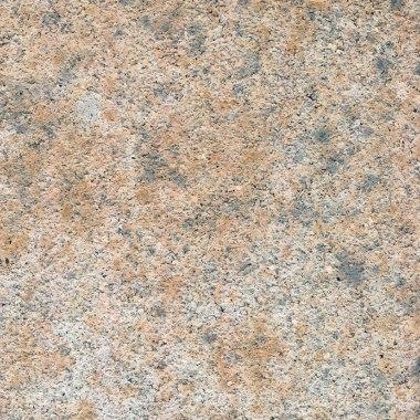 natuerliche unbehandelte Beton Oberflaeche Muschel Kalk nuanciert