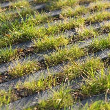 Rasenliner fuer Parkplatzbepflasterung mit Gras in den Zwischenraeumen