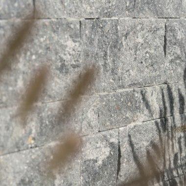 Gepflasterte Steinmauer in grau schwarz mit Pflanze